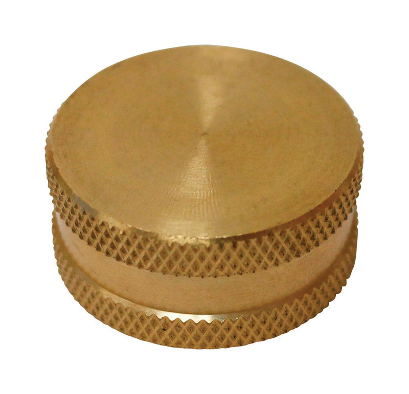 HOSE CAP W/WASHER 3/4"
