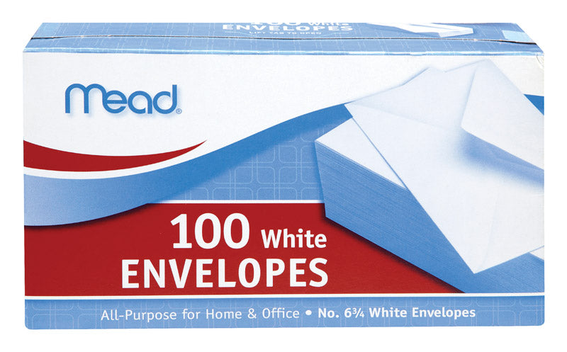 "ENVELOPE 6-3/4"" 100CT PL 