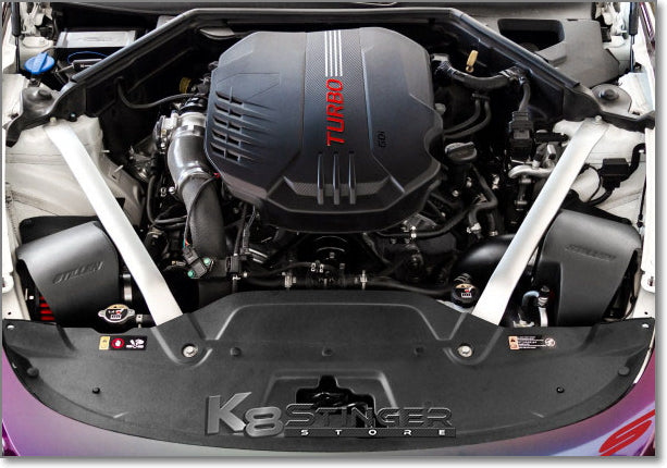 Stinger dual covered intakes