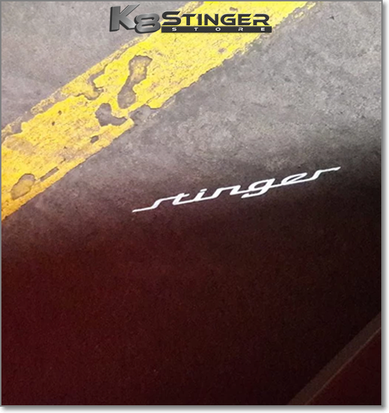 Stinger Projector light