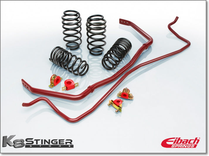 Eibach stinger pro plus kit