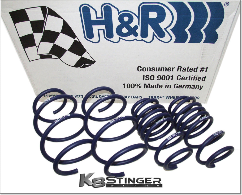 Stinger H&R Springs