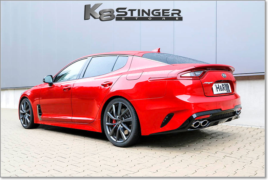 H&R Lowering Springs Stinger
