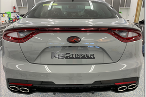 Stinger emblems