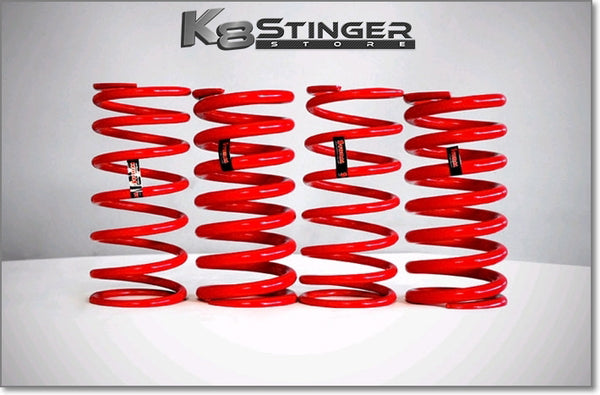 Kia Stinger Storm Lowering Springs