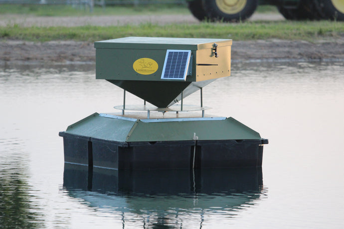 Small Floating Fish Feeder