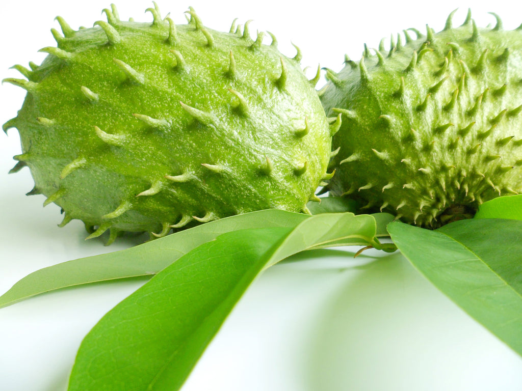 7 Surprising Facts About Graviola and Soursop You Need to Know