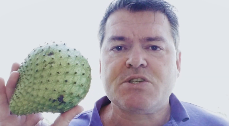 How to determine soursop ripeness