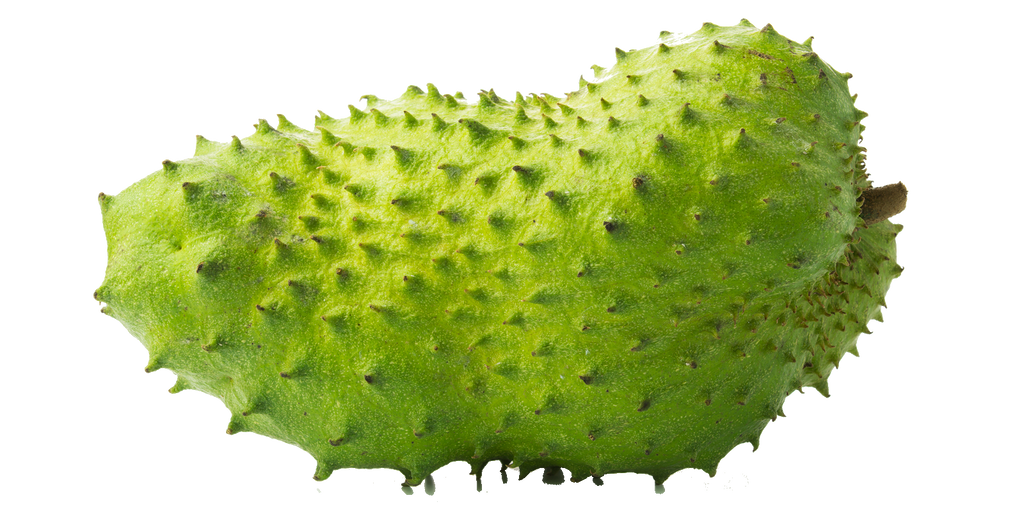7 myths about soursop and graviola