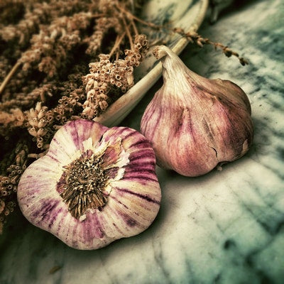 garlic is an anti cancer food