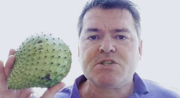 ripeness of fresh soursop fruit - video