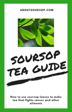 Organic soursop leaves for tea + FREE Tea Steeper - SoursopStore.com