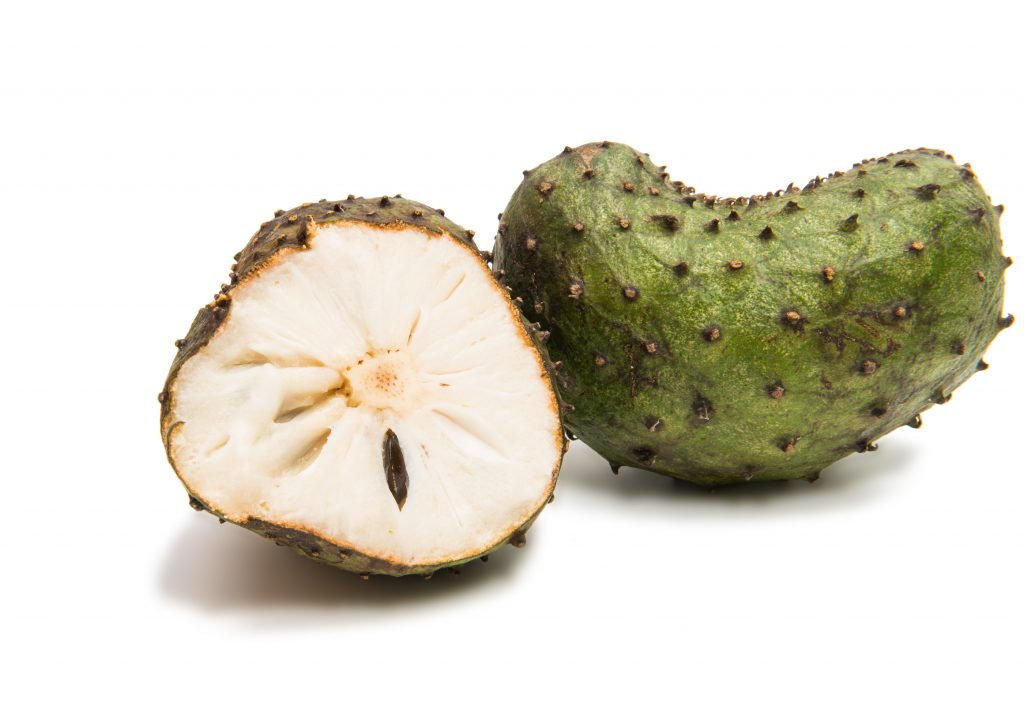 Fresh Soursop Fruit shipped to U.S. addresses
