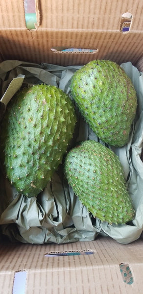 5 lb box of fresh soursop fruit