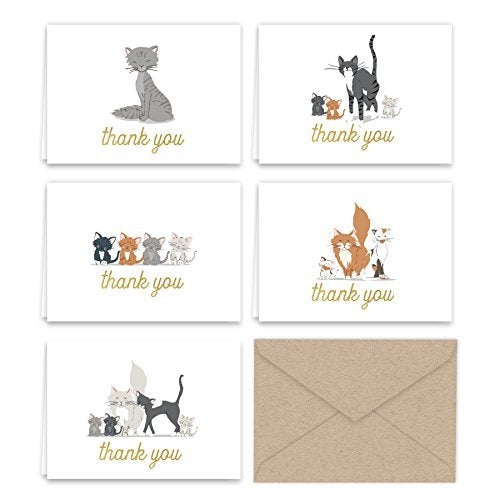 Kittens and Kitty Cats Thank You Note Card Collection