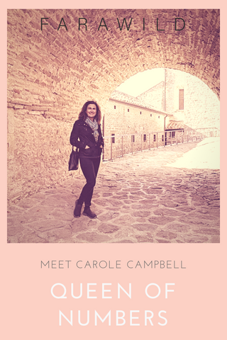 carole campbell, queen of numbers, carole on the fly, digital nomad