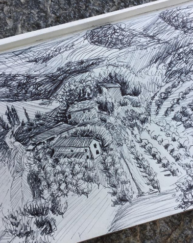 sketching and drawing tuscany countryside