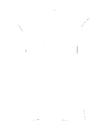 Ladies Black Sleeveless T-Shirt