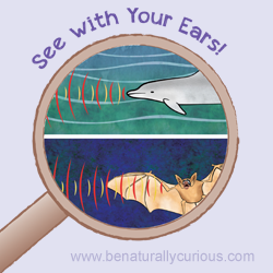 See With Your Ears Printables