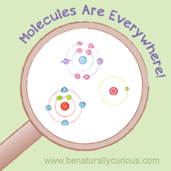 Molecules are Everywhere Printables