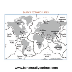 Plate Tectonics: The Changing Continents