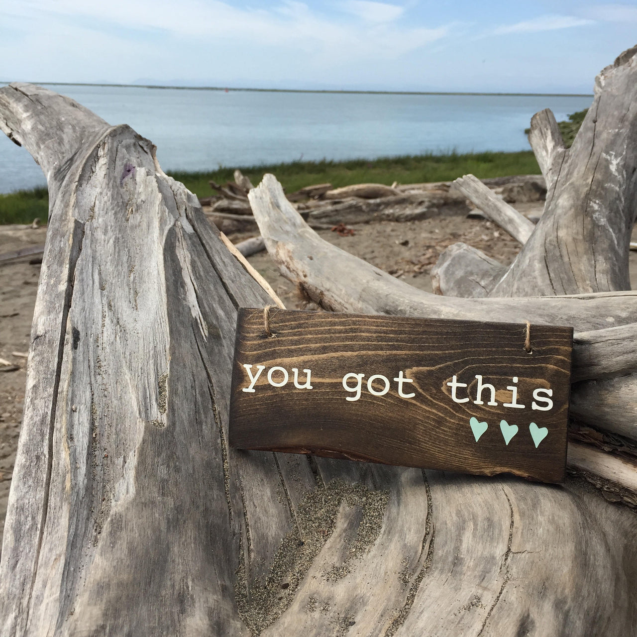You Got This Sign | Hanging Wood Sign