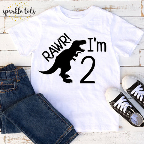 dinosaur birthday shirt, boys birthday top