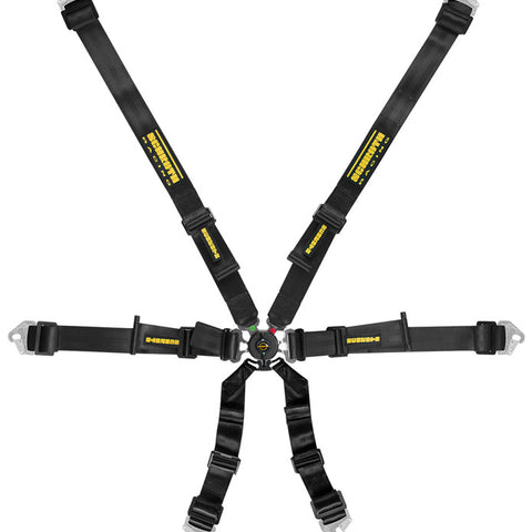 Schroth Flexi 2 x 2 Racing Harness