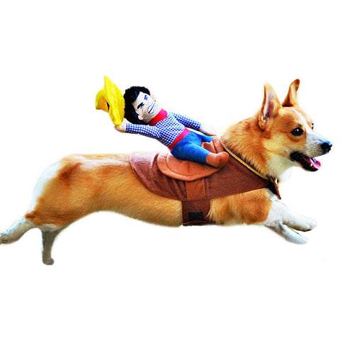 Cowboy Riding Dog Costume 50% OFF for a Limited Time!