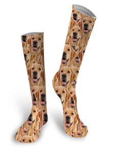 Custom Face Socks, Photo Socks, Face socks, Dog socks