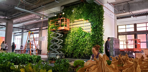 Breathe Live Wall Living Wall by Kelley Anderson of Art Botanica