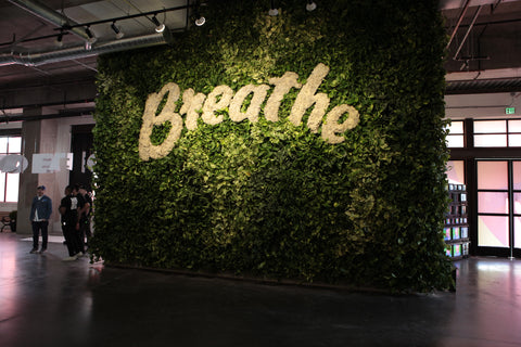 Live Wall Living Wall by Kelley Anderson of Art Botanica for We Rise LA