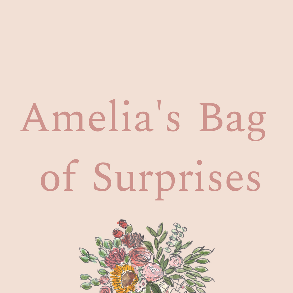 Amelia's Bag of Surprises