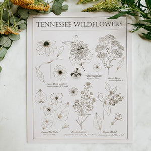 Tennessee Wildflower Print