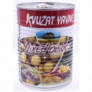 Kvuzat Yavne Mix Olives Pitted 540G