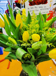 Tulips in Vase - Lapeoni Flowers and Events