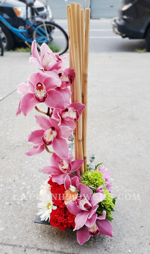 Secret Orchids - Lapeoni Flowers and Events