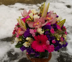 Winter Fresh - Lapeoni Flowers and Events