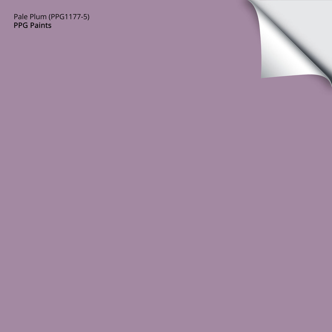 Pale Plum (PPG1177-5): 12