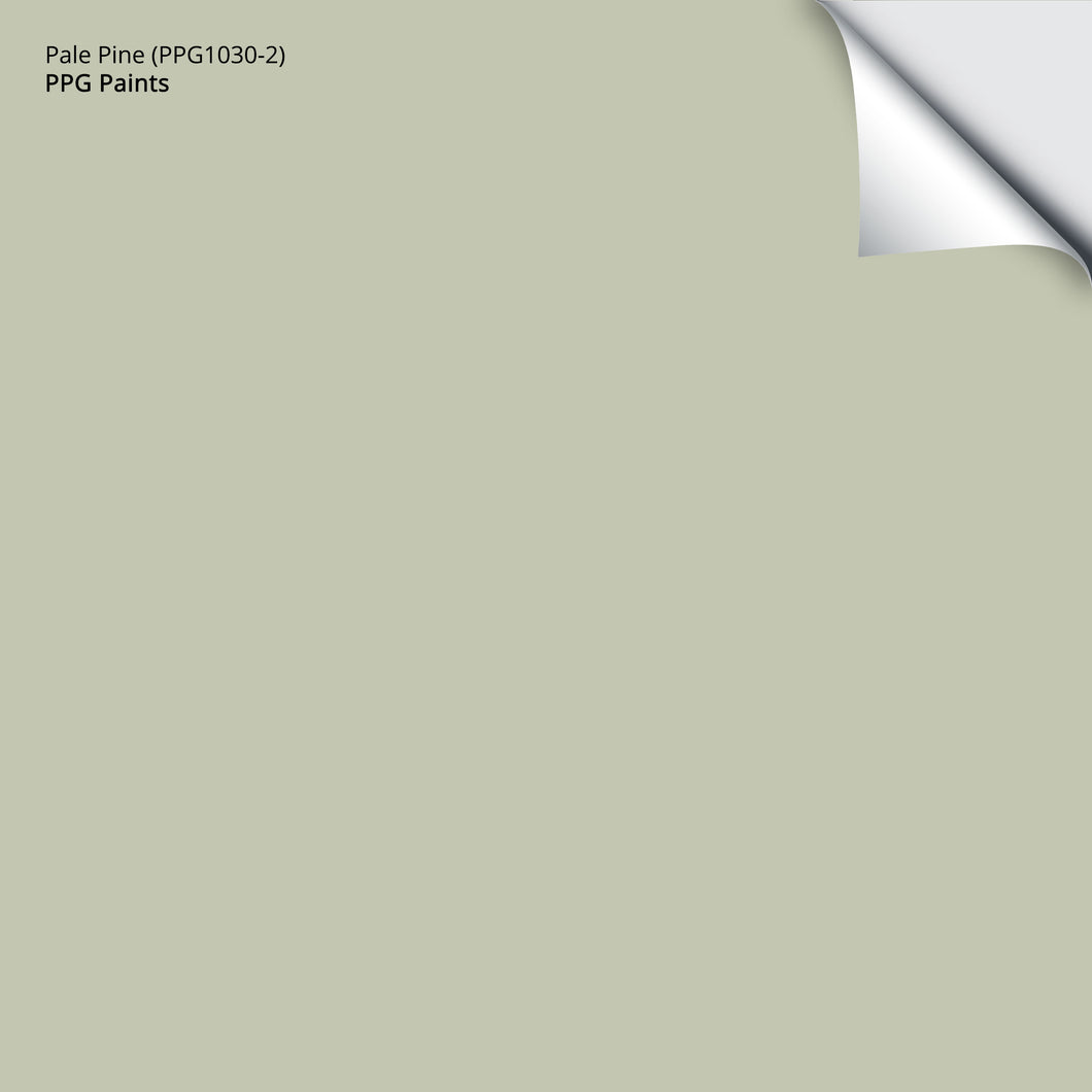Pale Pine (PPG1030-2): 12