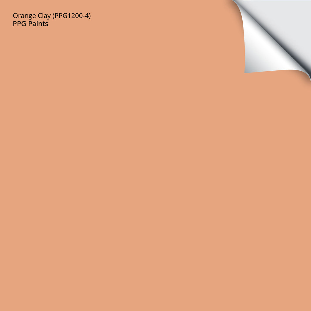 Orange Clay (PPG1200-4): 12