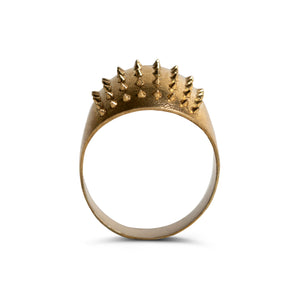 Little Porcupine - Polished Brass