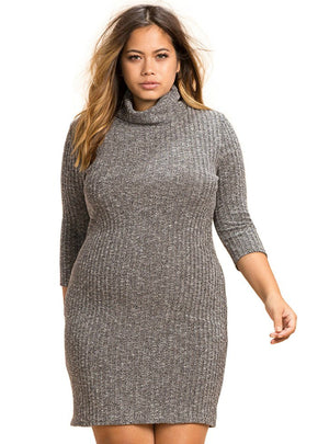 Turtleneck Knitted Dress Long Sleeve Bodycon
