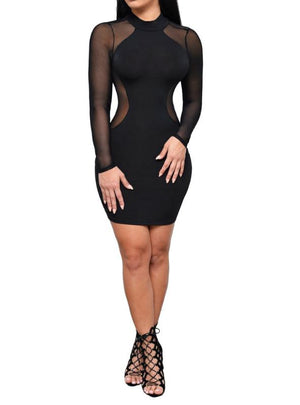 Long Sleeve Slim Bodycon Perspective Pencil Dress