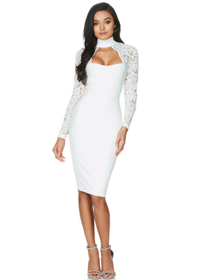 Lace Long Sleeve Nightclub Bodycon Dress