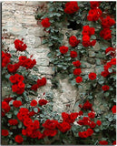 Red Roses on Wall - DIY Paint By Numbers