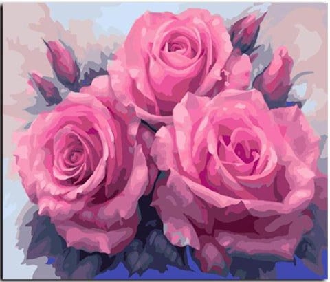 Pink Roses - DIY Paint By Numbers
