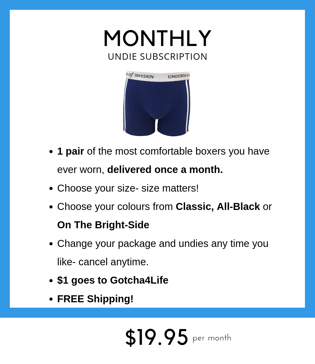 Monthly undie subscription