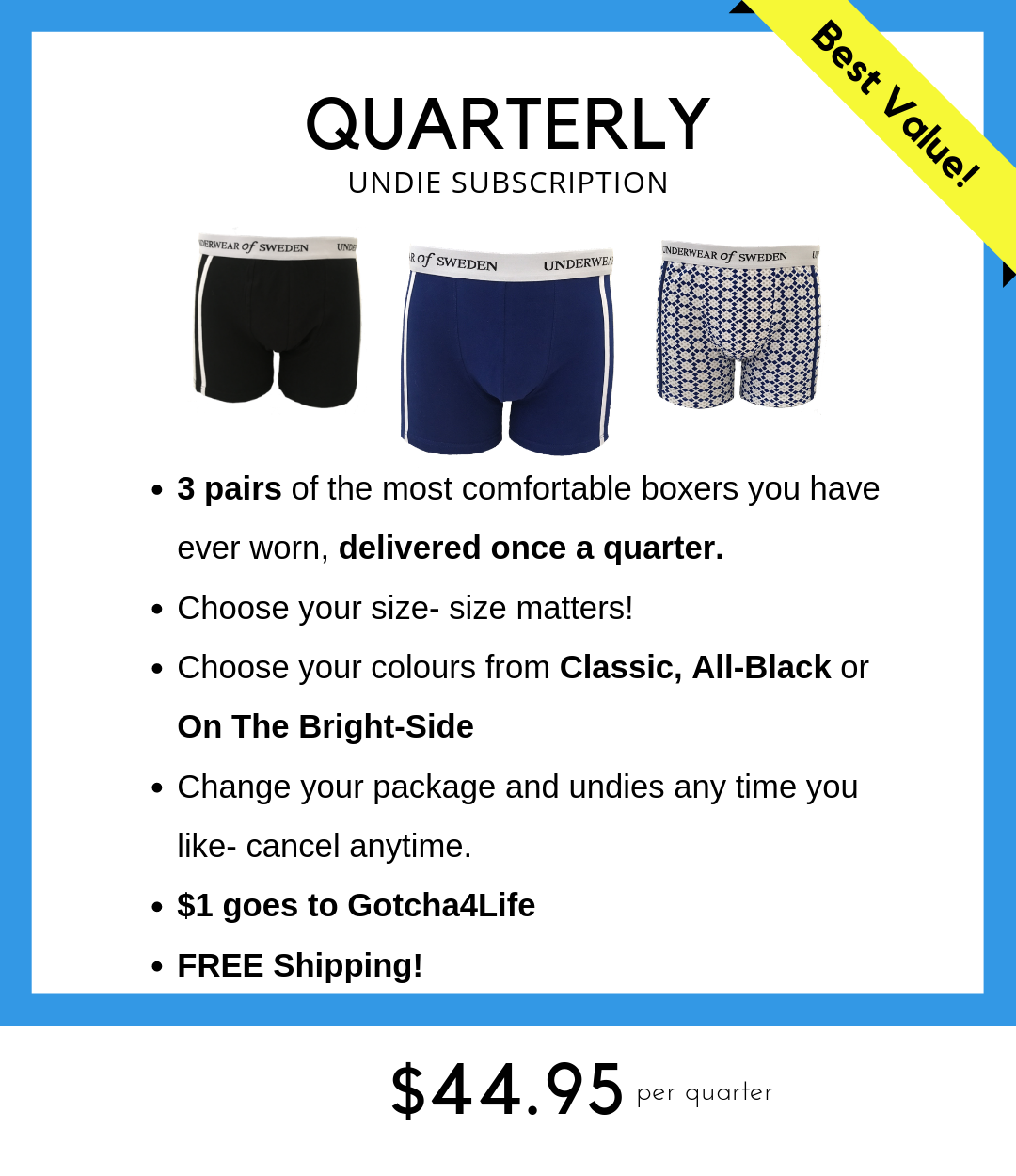 Quarterly undie subscription