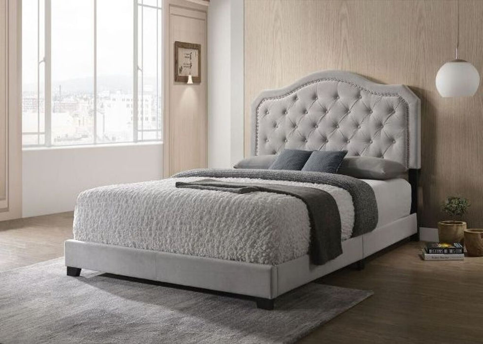 Samantha Bed Frame - Full/Queen/King